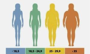 Что такое ИМТ (индекс массы тела): формула и рассчет онлайн с пояснением