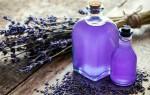 Польза эфирного масла лаванды и возможный вред: описание и свойства