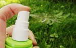 Проверенные народные средства от комаров — как защититься от укусов