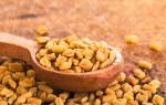 Что такое пажитник (шамбала): польза и вред, секреты применения семян