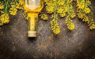 Что такое рапсовое масло и где его применяют — секреты выбора и хранения