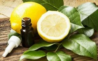 Все про эфирное масло лимона: польза и вред, секреты применения