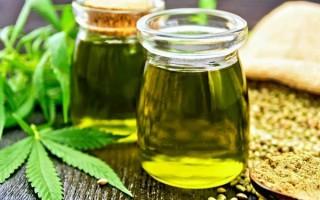 Полезные свойства конопляного масла и возможный вред: отзывы и выбор