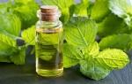 Об эфирном масле мелиссы: польза и вред, применение, рецепты для волос и лица