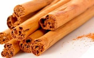 Полезные свойства цейлонской корицы — рецепты ароматного чая