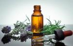 Как действует эфирное масло розмарина на волосы: польза и способы применения