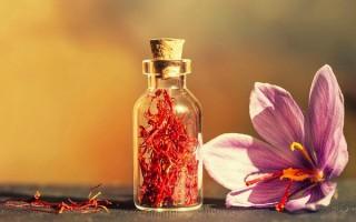 Польза и вред масла шафрана: уникальные свойства и секреты применения