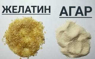 Что лучше — агар-агар или желатин: что полезнее и как их взаимозаменить по таблице