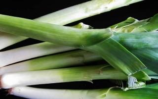 Как правильно выращивать лук-порей и можно ли сделать это за один сезон