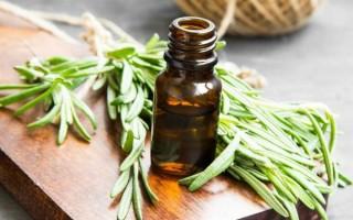 Описание эфирного масла чабреца (тимьяна), практическое применения и свойства