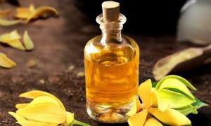 Что такое иланг-иланг: секреты эфирного масла, влияние на тело и инстинкты