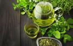 ТОП 10 трав и 8 специй для повышения иммунитета — эффективные рецепты
