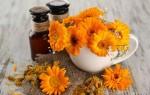 Просто и понятно о календуле: чудесные лечебные свойства и применение
