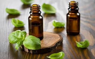 Свойства эфирного масла базилика: польза и вред, рецепты с эфиром и применение