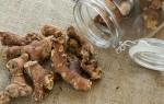 Что такое корень калгана и как его используют: рецепты приготовления, польза и вред