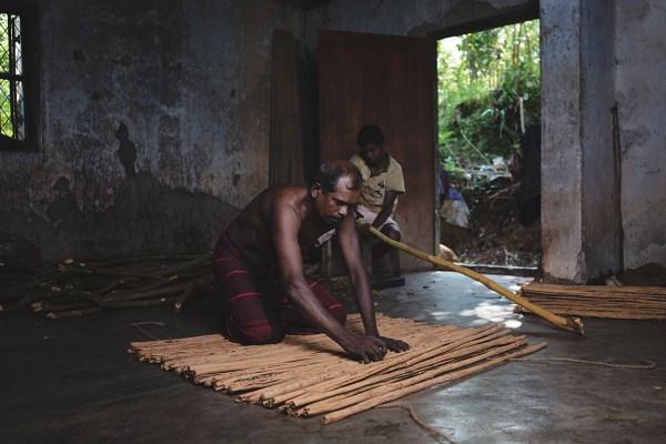 Изготовление корицы