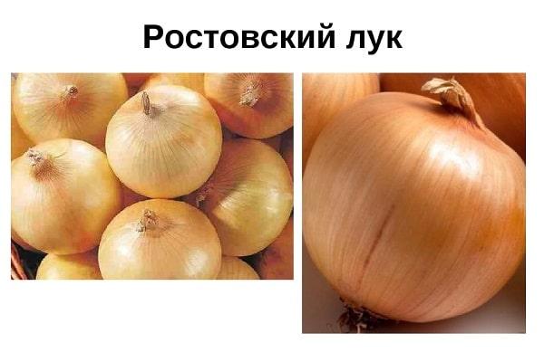 Ростовский сорт