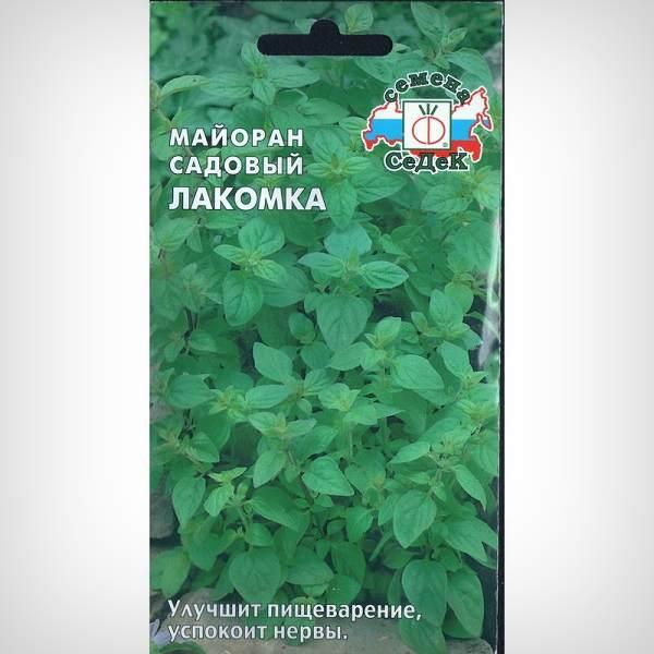 Майоран Лакомка