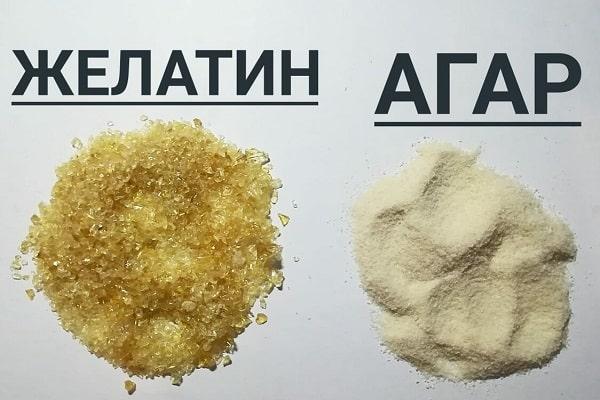 Желатин и Агар